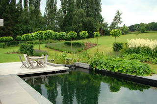Natural Pool in Green Garden